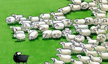 Black sheep are sometimes tolerated, seldom rewarded, and often banished