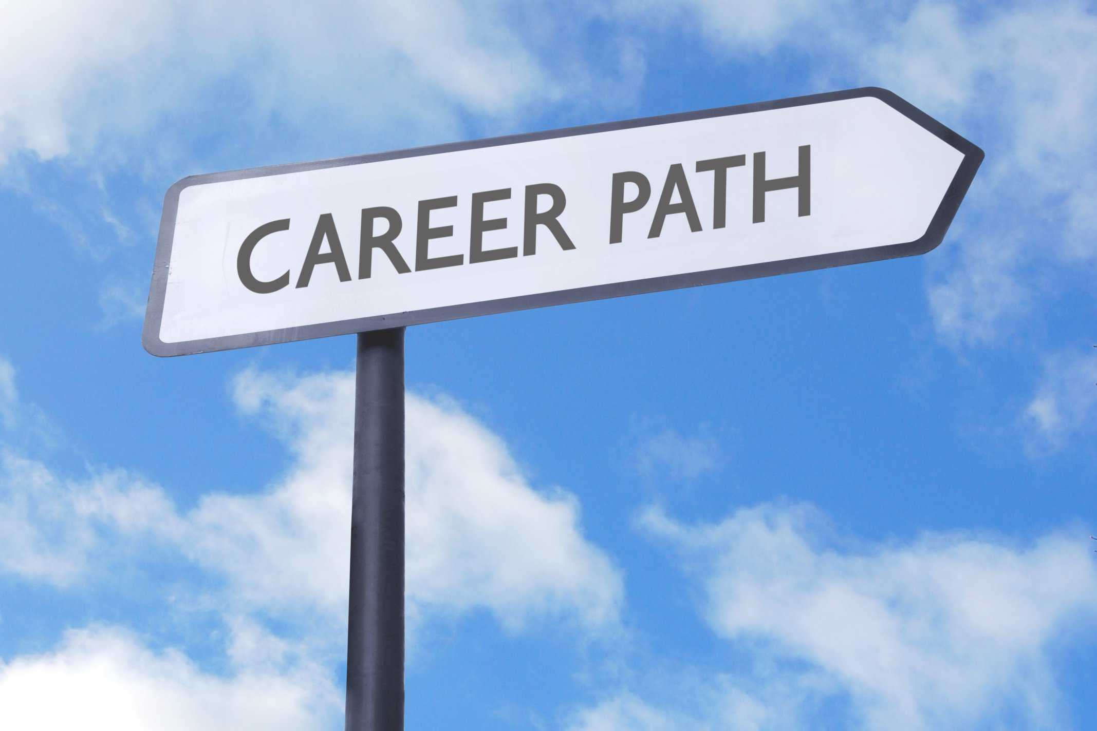 Career path: What's the best one for me?
